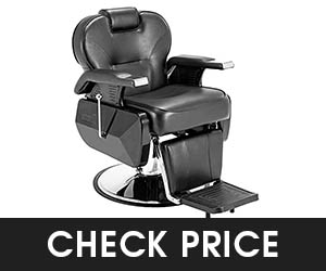 5 - Artist Hand Barber Chair