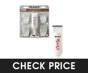6 - Wahl Professional Peanut Classic Trimmer