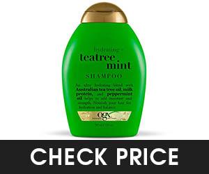 2 - OGX Tea Tree Mint Shampoo
