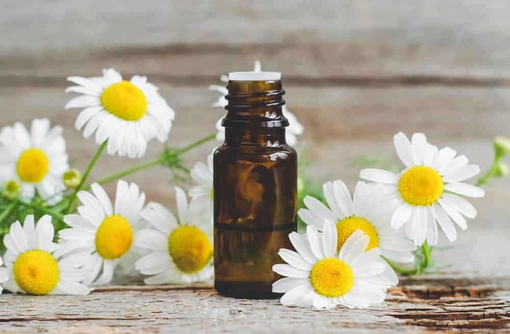 chamomile benefits for sleep
